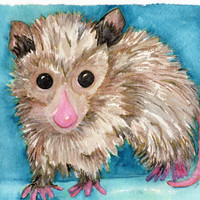 Possum Painting Watercolor Painting, Opossum Art, Original