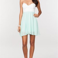 A'GACI LACE + CHIFFON SKATER DRESS - DRESSES