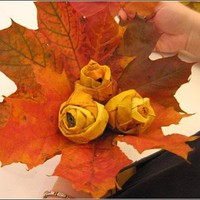 How to make roses from maple leaves  |  haha.nu - the lifestyle blogzine - StumbleUpon