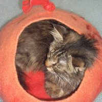 S-size Pets cave,Cat cave, Felted cats pets bed, cat house,eco friendly, Vase, hand crafted