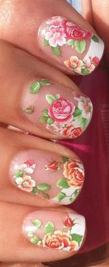 NAIL ART WATER DECALS TRANSFERS STICKERS FLORAL WILD HEDGE ROW ROSES/BUDS #477