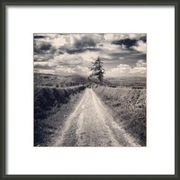 The Road Goes On Framed Print By Alexandra Cook