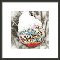 Bauble Framed Print By Alexandra Cook