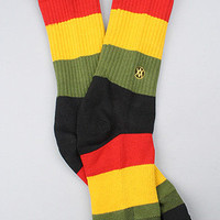 The Maytal Sock in Rasta Sock