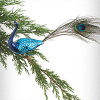 Peacock Plume Clip-On Ornament | PLASTICLAND