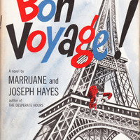 Bon Voyage! The Gay Adventures and Misadventures of an American Family in Europe