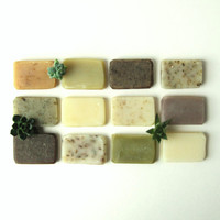 Handmade Organic Vegan Soap Samples Some Of Each by prunellasoap