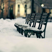 Winter photography white snow on black benches art by Raceytay