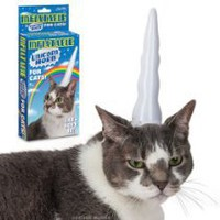 Cool Stuff - Inflatable Unicorn Horn for Cats