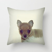 CHIHUAHUA PUPPY  DOG Throw Pillow by M✿nika  Strigel	 | Society6 *** THREE SIZES!