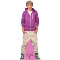 Cool Stuff - One Direction Life-size Stand-up Cutout- Niall