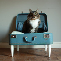 Cozy Cargo Suitcase Pet Bed  Pretty Blue by lovenostalgicwhimsy