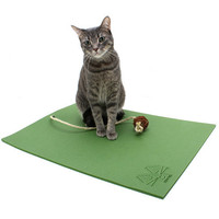 The Yoga Cat Mat: The Alternative To Sharing a Yoga  Mat with your Human