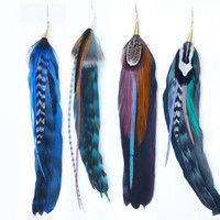 Exotic Feather Earrings
