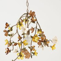 Cherry Blossom Chandelier - Anthropologie.com
