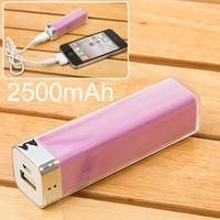 2500mah Mobile External Power Battery Charger for Iphone 4/4s, Various Mobile Phones and Digital De