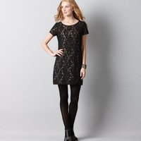 Loft - LOFT New Arrivals - Lace Shift Dress