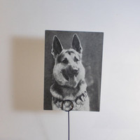 Vintage Dogs Series Alsatian Photo Postcard  by RussianSoulVintage