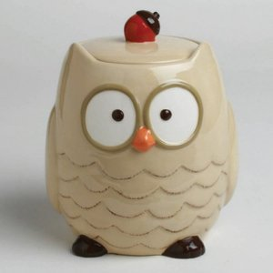 Walmart: Tag Owl Cookie Jar