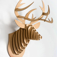 Cardboard Buck Jr. Trophy