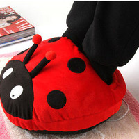 Cute Ladybird USB Heating Shoes War.. on Luulla