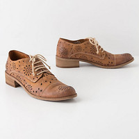 Cutout Daisy Oxfords