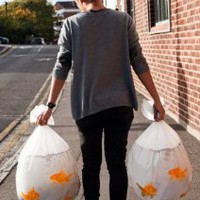 Amazon.com: Suck UK Goldfish Happy Sack Bin Bags: Home & Kitchen