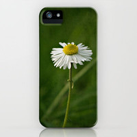 Daisy iPhone Case by Around the Island (Robin Epstein) | Society6