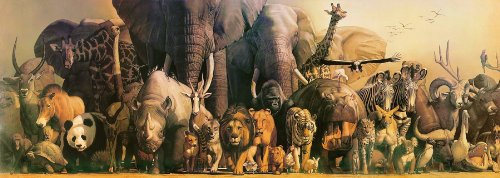 Safari LTD Wild Animal - Laminated Rolled and Tubed Poster