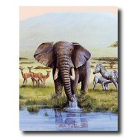 African Elephant Zebra And Deer Animal Wildlife Picture Art Print
