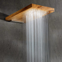 Fancy - Terra Marique Natural Wood Shower Head ($100-200)