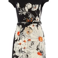 Multi daisy print dress - View All  - Dresses  - Dorothy Perkins
