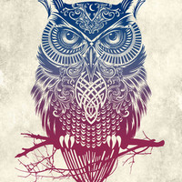 Evening Warrior Owl Art Print by Rachel Caldwell | Society6