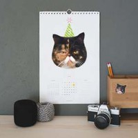 Cat 2013 Calendars & Stickers
