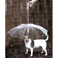 (Dog Umbrella Keeps your Pet Dry and Comfotable in Rain