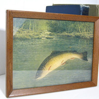 Framed Print Fly Fishing Large Mouth Bass Wesley by ToucheVintage