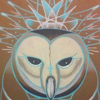 icy winter owl blue and white barn owl original art