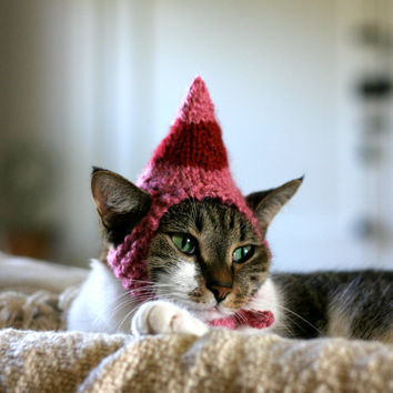 Jovie the Elf Cat Hat Valentines Day Pet Costume by scooterKnits