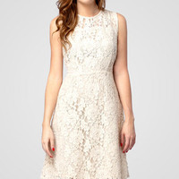 Eggshell Large Lace Dress | Shop Tulle Dresses Now | fredflare.com