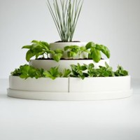 three tier herb planter + seeds
