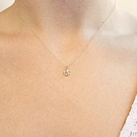 Tiny Squirrel - 14k Gold Filled Chain and Gold Squirrel
