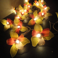 20 Yellow-Red-Pink Orchid Flower Fairy String Lights Wedding Party Floral Home Decor 3.5m
