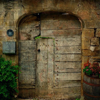 Door To the Secret Garden  Old Door Fine Art by Maximonstertje