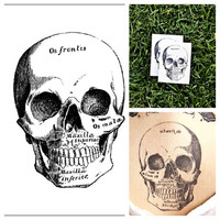 Skull - temporary tattoo (Set of 2)