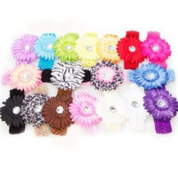 Ema Jane - 16 Large Gerber Daisy Flower Hair Clip Bows (32 Pack, 16 Flowers + 16 Headbands) with Soft Stretch Crochet Child Head Bands - Will Fit Infants, Baby, Toddlers, Girls, Youth, Newborns