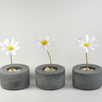 Mini Round Concrete Pot  set of 3 by roughfusion on Etsy