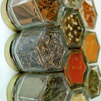 Custom Magnetic Spice Rack set of 10 empty EMBOSSED by GneissSpice