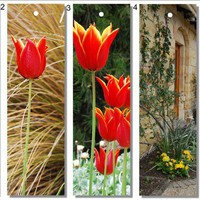 Printable bookmarks Photographic with tulips, stone wall and foliage - set of 5