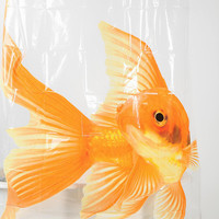 Urban Outfitters - Goldfish Shower Curtain