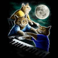 Three Keyboard Cat Moon - Threadless.com - Best t-shirts in the world